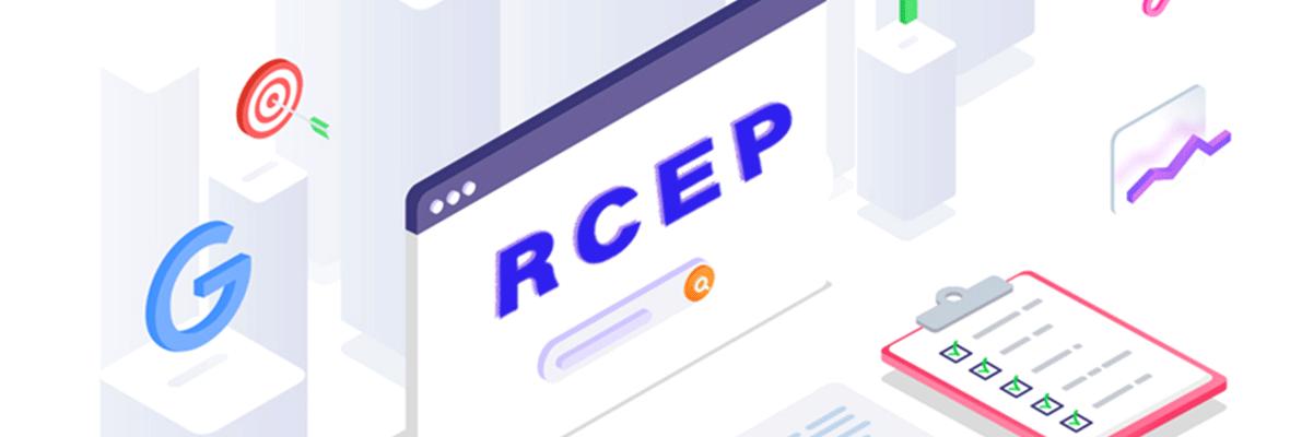 B2B型外贸企业,RCEP红利来之前,应该怎么做?
