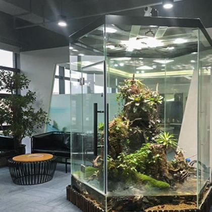 全球搜 内部环境 雨林缸